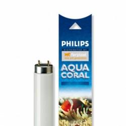 Philips AQUA CORAL - 30W - 90см